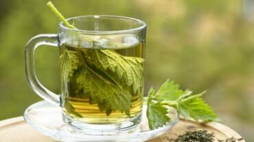You probably didn't know about these 7 scientifically-proven benefits of nettle tea