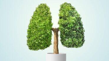 आयुर्वेद विशेषज्ञ से जानिए ऑक्सीजन लेवल को संतुलित रखने के 3 जरूरी उपाय